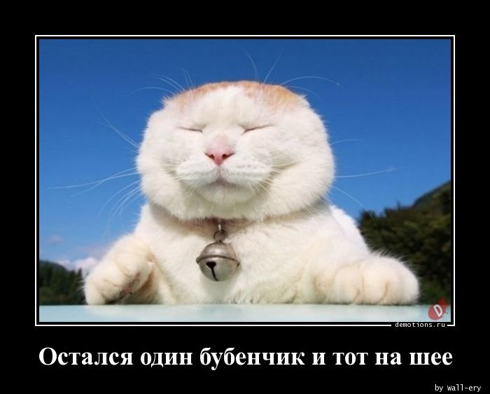 1533488221_ostalsya_odin_bubenc_demotions_ru