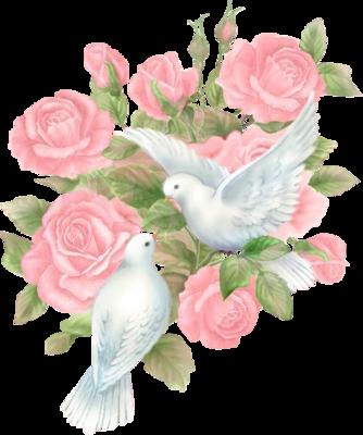 tubes_fleurs_saint_valentin_tiram_115