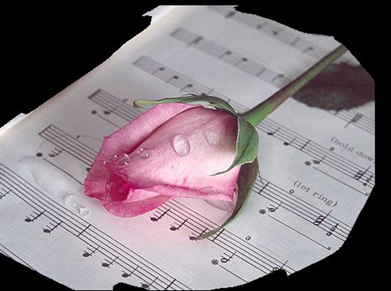tubes_fleurs_tiram_345