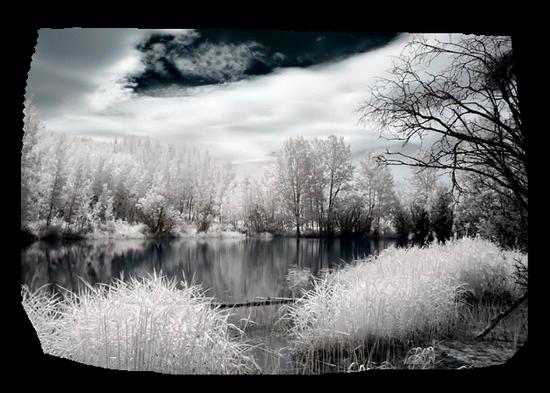 paysage_tiram_475