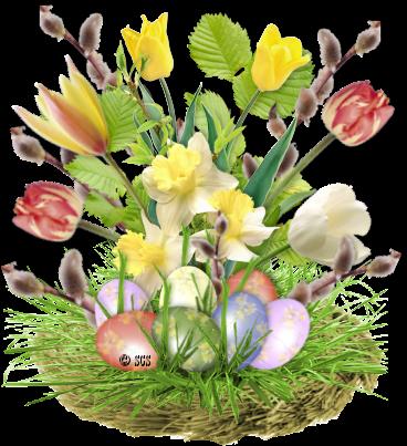 fleurs_paques_tiram_114