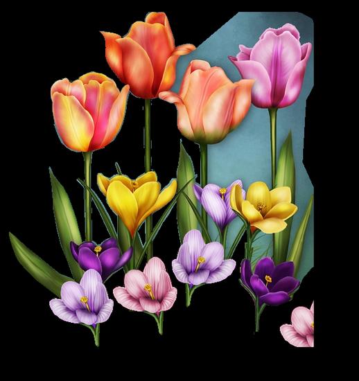 tubes_fleurs_tiram_491