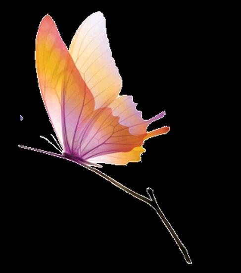 tubes_papillon_tiram_567