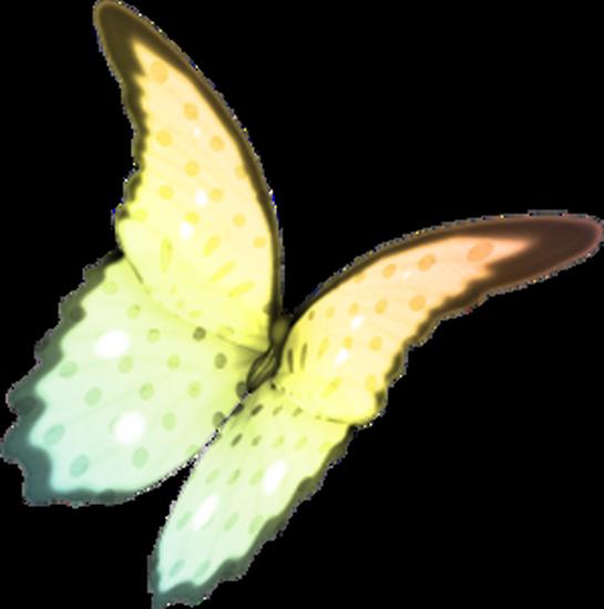 tubes_papillon_tiram_726