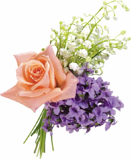 tubes_fleurs_tiram_106