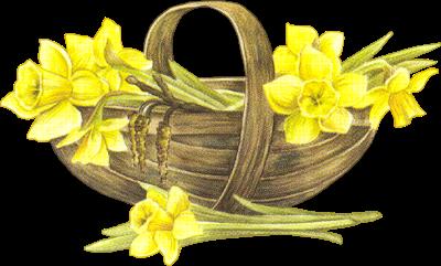 fleurs_paques_tiram_193