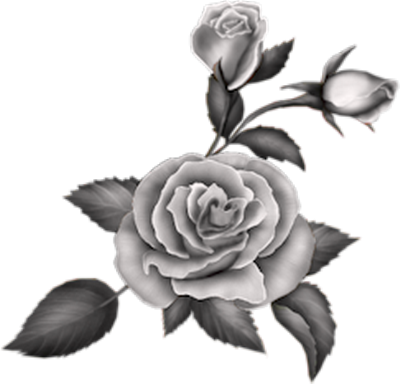 tubes_fleurs_tiram_355