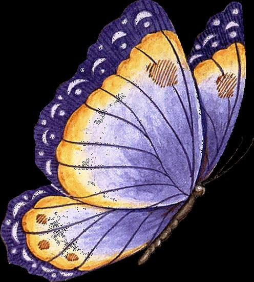tubes_papillon_tiram_211
