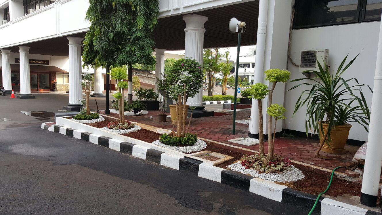 taman minimalis kantor