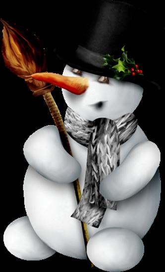 bonhommes-de-neiges-tiram-119