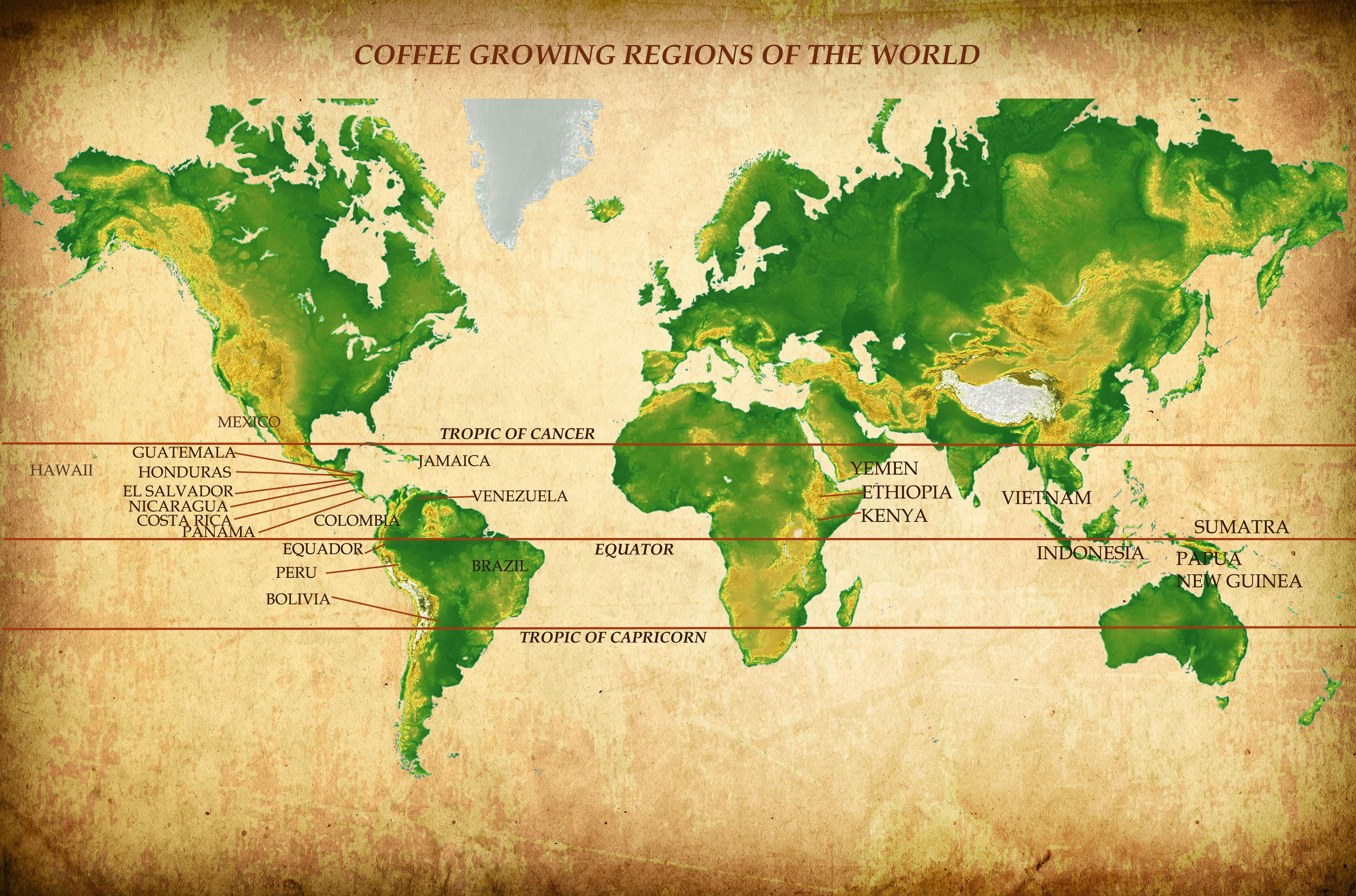 Coffee belt czyli pas kawowy, na którym uprawia się kawę