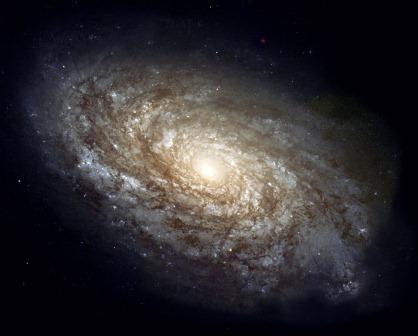 Galaksi tetangga kita, Andromeda. Ada milyaran planet di sana, kenapa tak ada satupun yang berpenghuni.