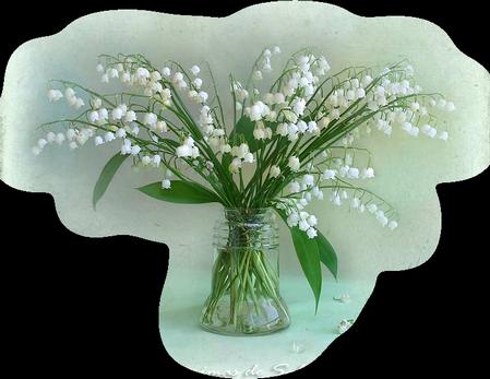 tubes_fleurs_tiram_871