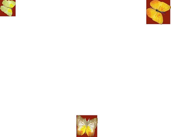 tubes_papillon_tiram_312