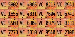 VICE_SUNSET_licenseplates_LQ.png