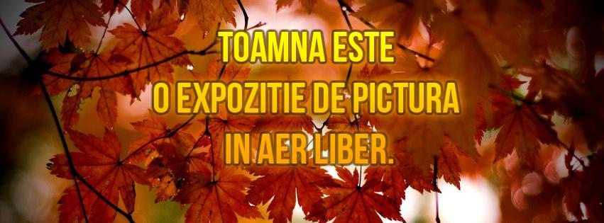 Toamna_este_o_expozitie_de_pictura_in_aer_liber