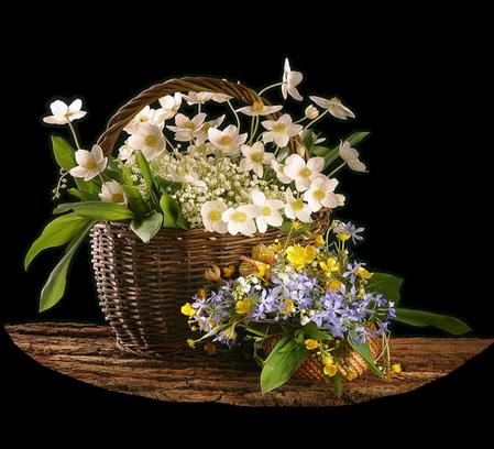 tubes_fleurs_tiram_858