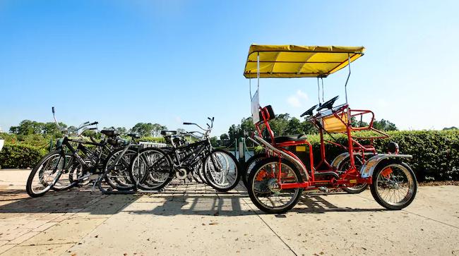 Rent a Surrey Bike at Disney's BoardWalk