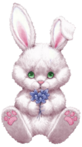 lapins_paques_tiram_157