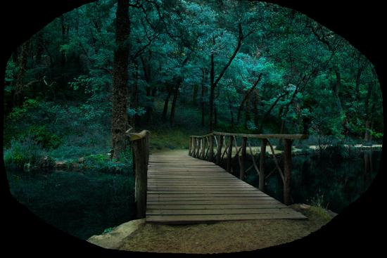 paysage_tiram_769