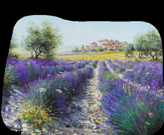 paysage_tiram_862