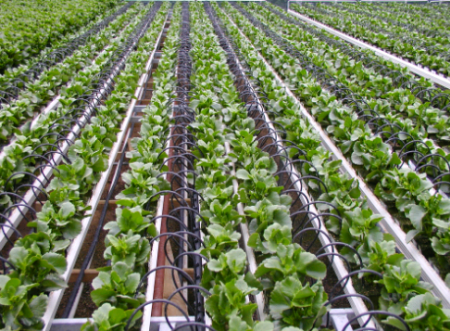 Perth Irrigation Supplies
