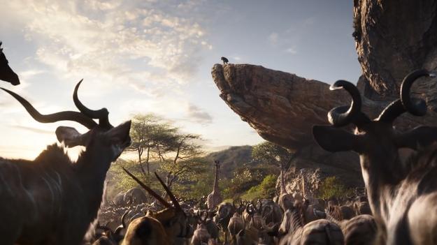 «Король Лев» получил первый трейлер фильма и взорвал интернет
