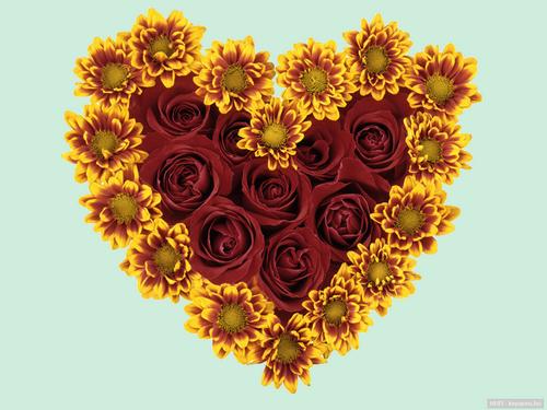 tubes_fleurs_saint_valentin_tiram_132