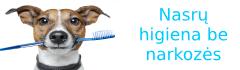 Šunų nasrų higiena