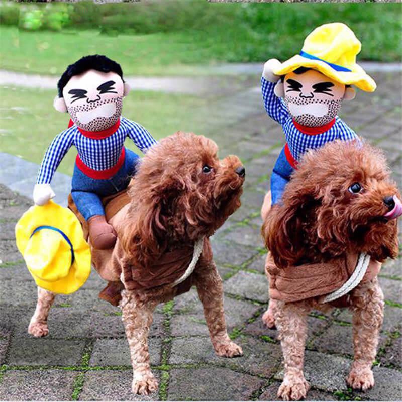 dog_cowboy_costume_pet_clothes_halloween_riding_horse_party_funny_puppy_rider ride em cowboy