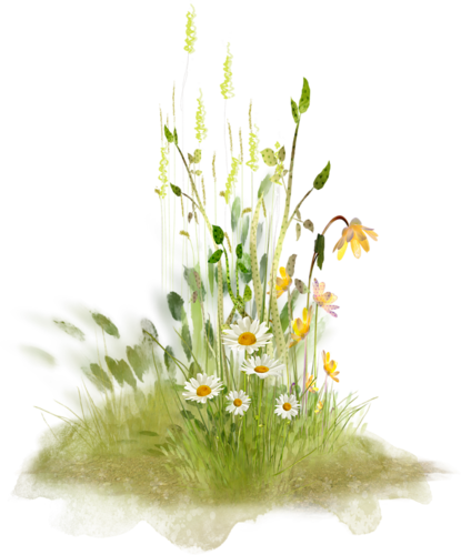 tubes_fleurs_tiram_547
