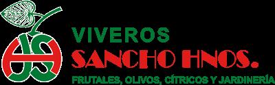 Viveros Sancho Hnos, vivero de olivos