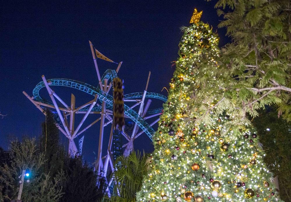 Busch Gardens Tampa Bay Christmas