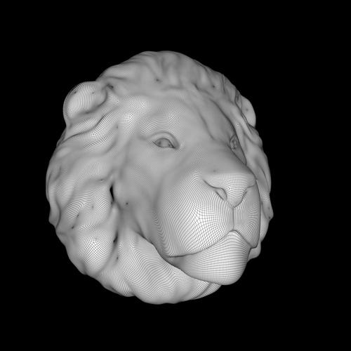 Lion261k_Wireframe