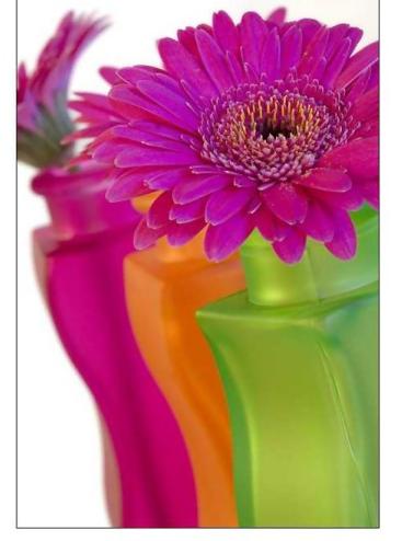 tubes_fleurs_tiram_827