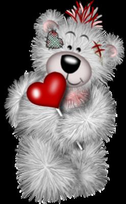 teddy_saint_valentin_tiram_153