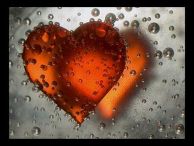 love17.jpg