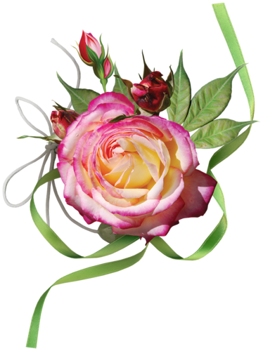 tubes_fleurs_tiram_597