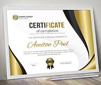 Modern Certificate - 3