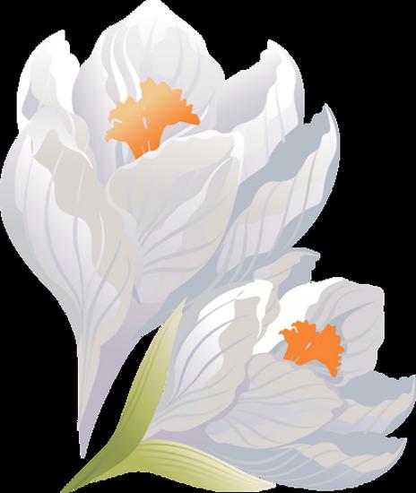 tubes_fleurs_tiram_398