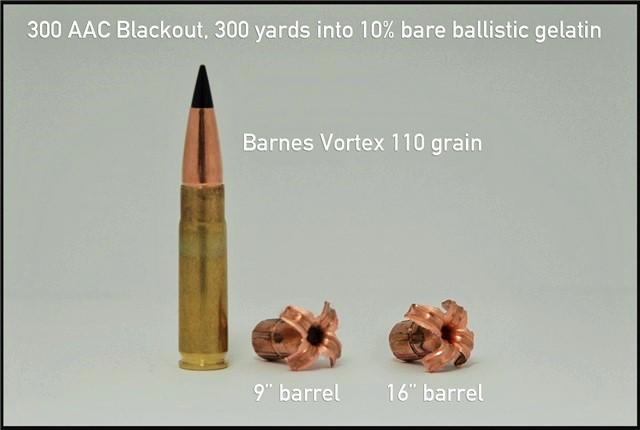 300 blackout hunt - AR15.COM