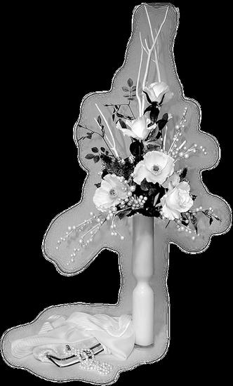 tubes_fleurs_tiram_204