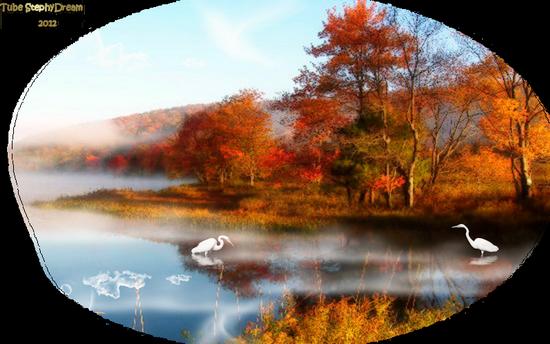 paysage_tiram_57