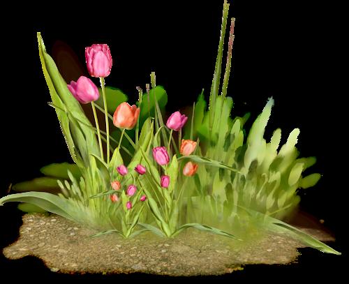 tubes_fleurs_tiram_556