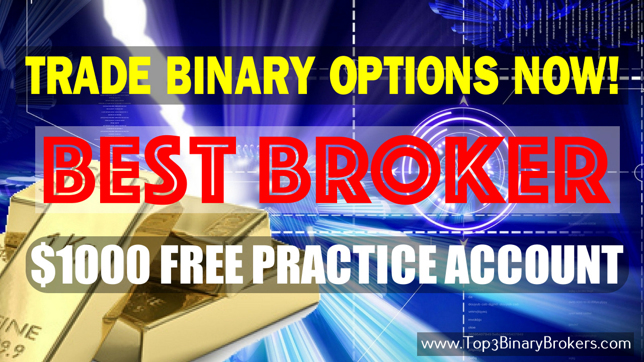 Best IQ Binary Option Trading Signals Indicators United Arab Emirates