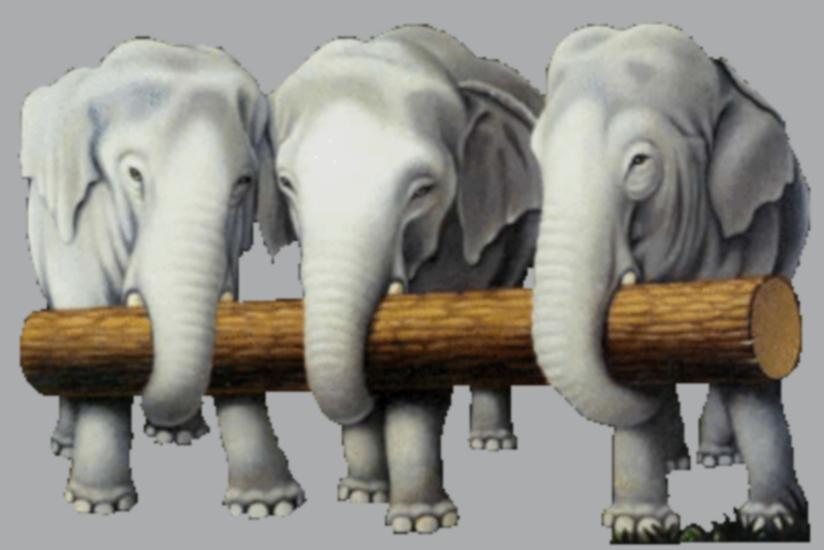 tubes_elephants_tiram_438