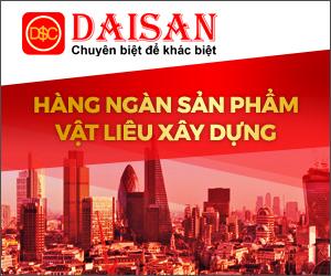 300x250 daisai