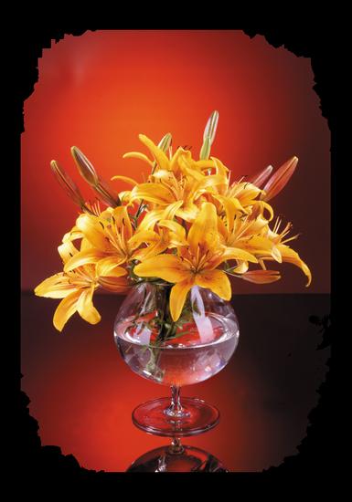 tubes_fleurs_tiram_454