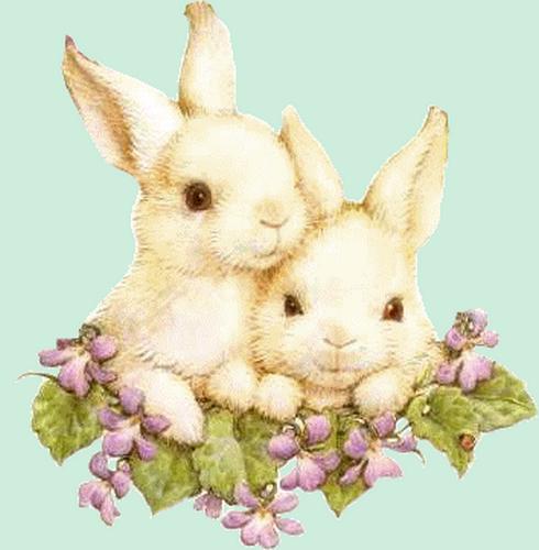 lapins_paques_tiram_304