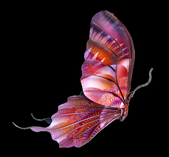 tubes_papillon_tiram_771